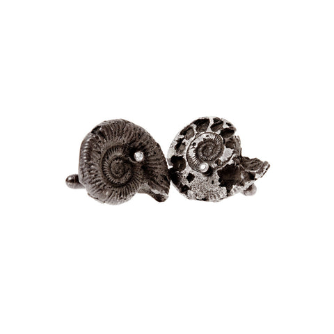 Ammonite Cuffs