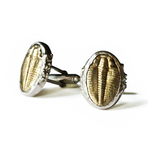 Trilobite Cuff Links