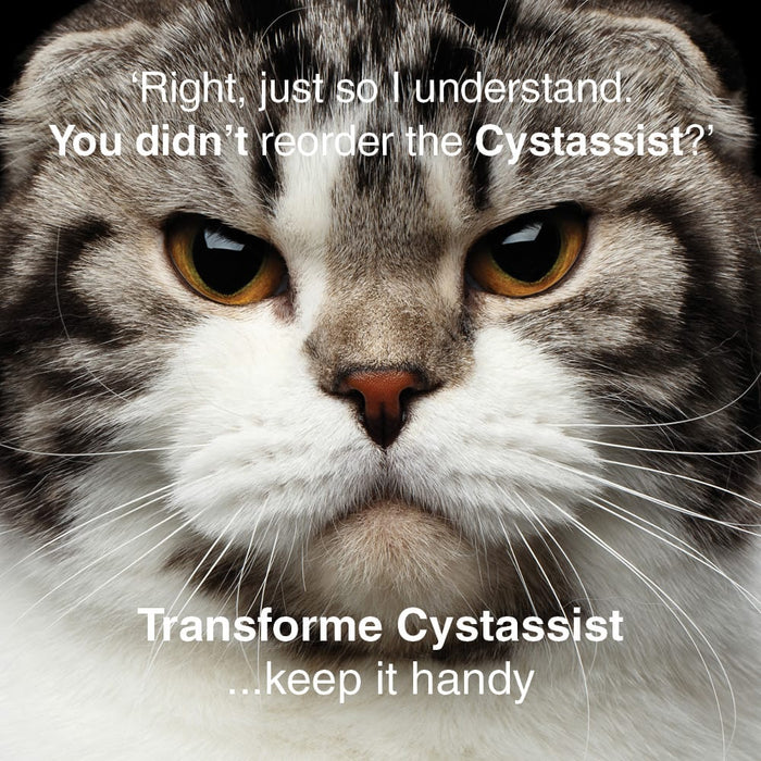 Funny image of stern looking cat saying - Right, just so i understand. You didn't reorder the Cystassist? Sign off line is, Transforme Cystassist ...keep it handy.