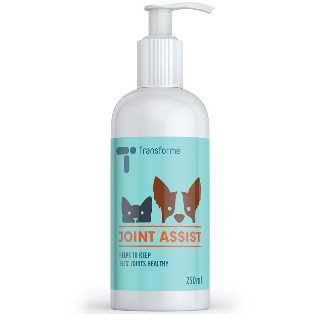 Joint Assist Pet Joint Supplement, Liquid Glucosamine for Dogs & Cats with a Tasty Beef Flavour