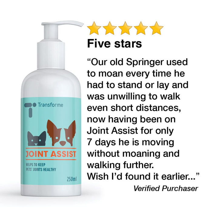 Transforme Joint Assist 5 star customer review after using for their dog