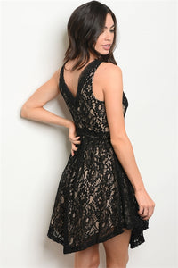 BLACK/NUDE LACE V-NECK DRESS