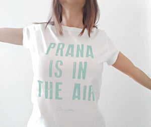 Camiseta Prana is in the air - Mint