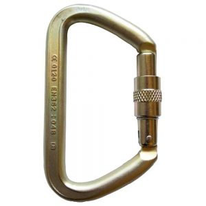 ISC Screwgate Small Iron Wizard Karabiner