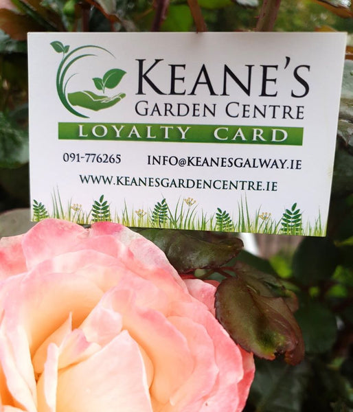 Loyalty Cards at Keane's Garden Centre