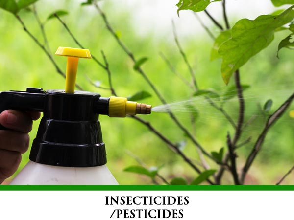 Insecticides/Pesticides