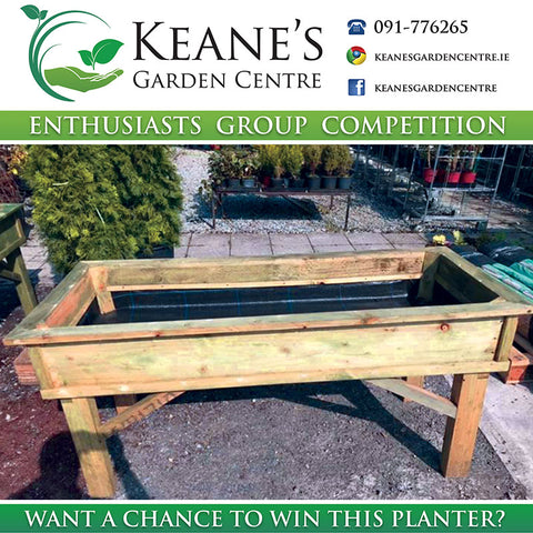Competition Time - Win a Large vegetable planter