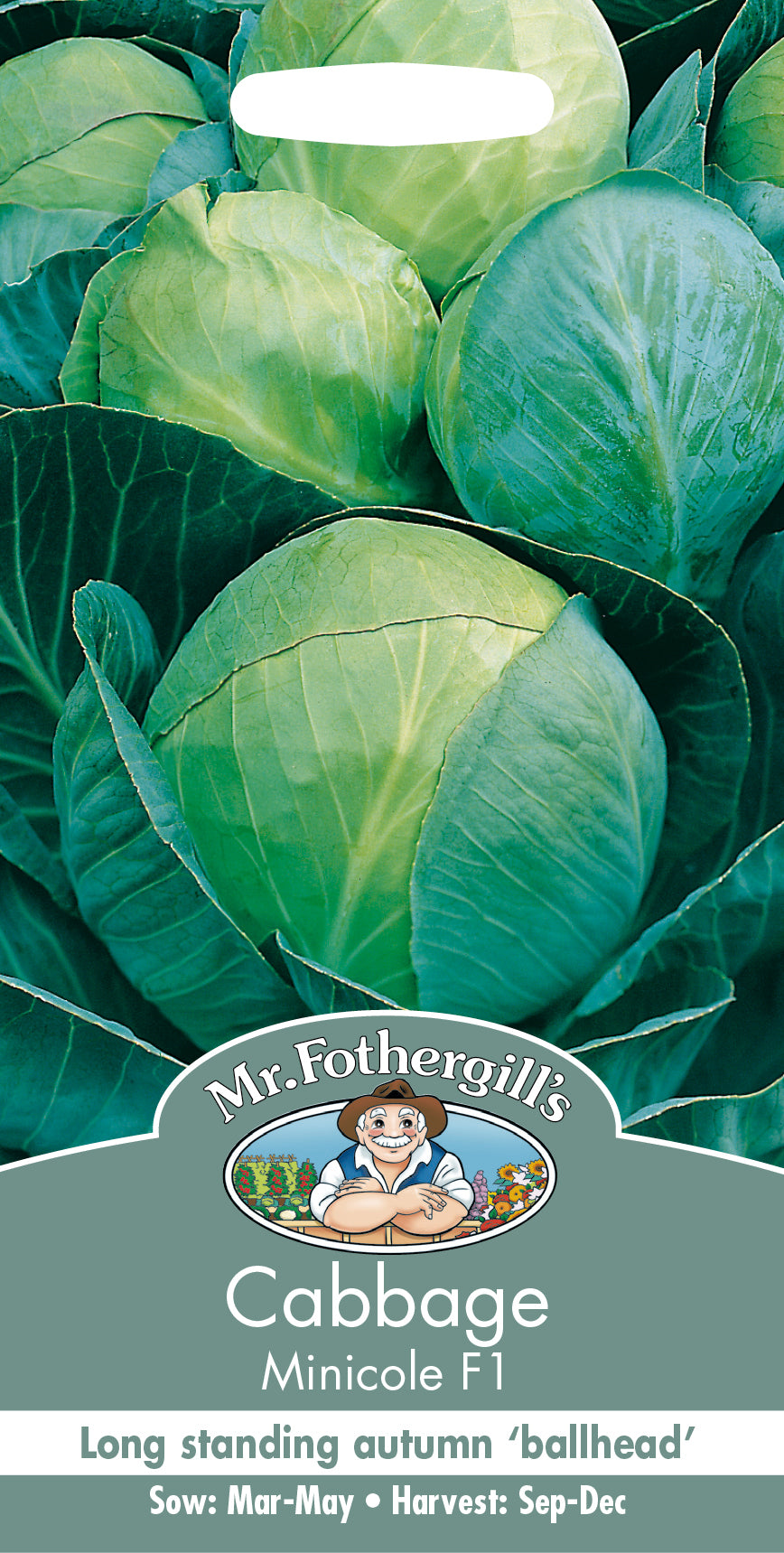 Cabbage Minicole F1 Seeds