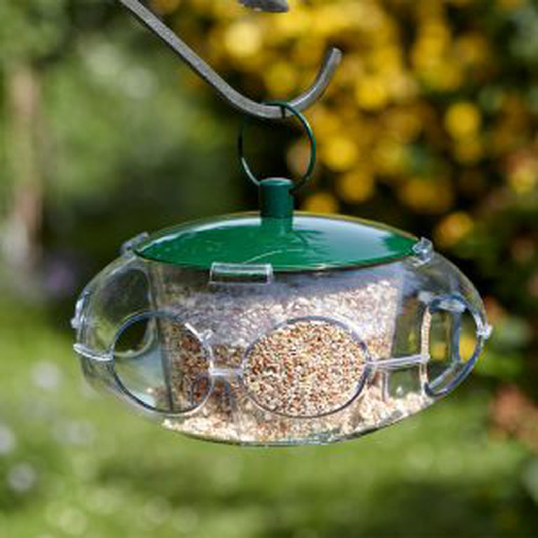 Small Bird Seed Feeder