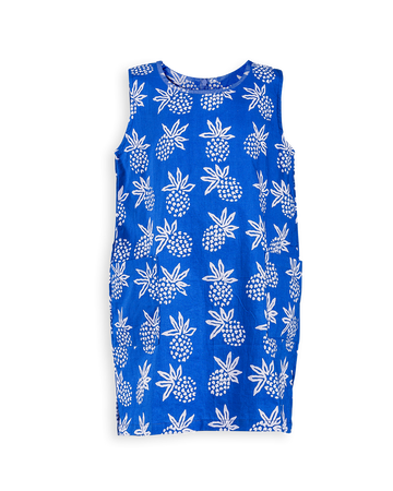 Island Hopping Dress in Azure Pineapple Express