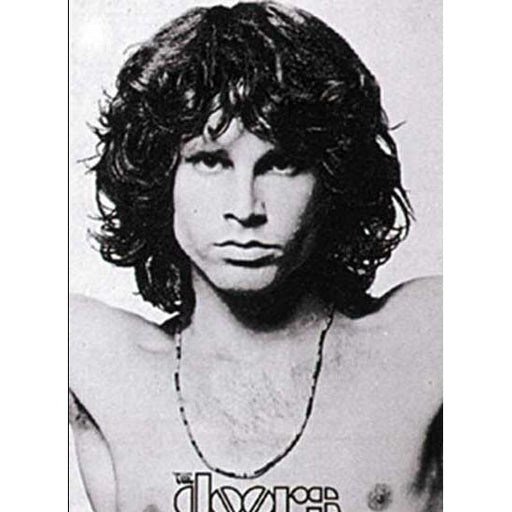 thedoors-flags-open-arms