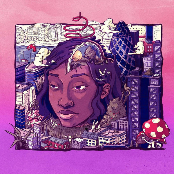 Little Simz - Stillness In Wonderland: Deluxe Edition (2xLP) Age 101