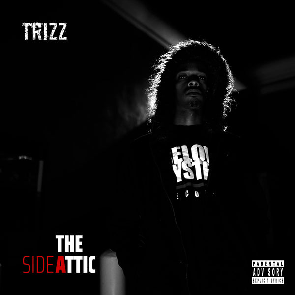 Trizz - The Attic (CD) Below System Records