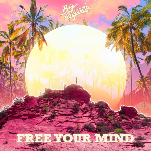 Big Gigantic - Free Your Mind (2xLP) Counter Records