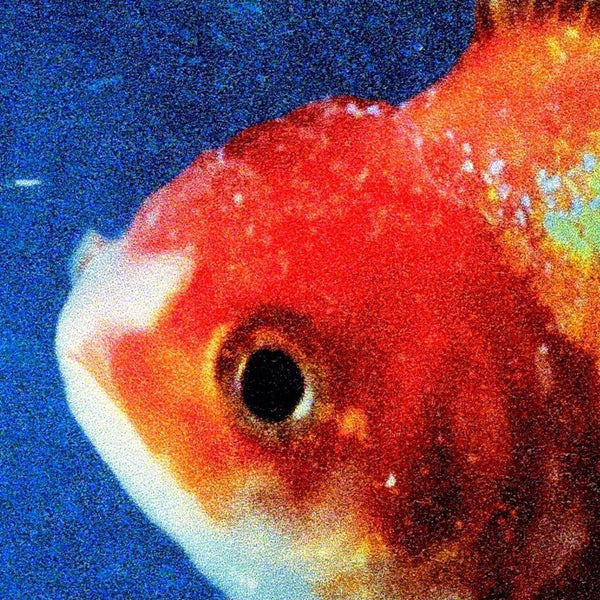 Vince Staples - Big Fish Theory (CD) Def Jam