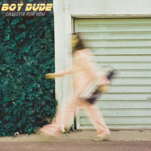 BOY DUDE - Cassette For You (LP) Hobo Camp