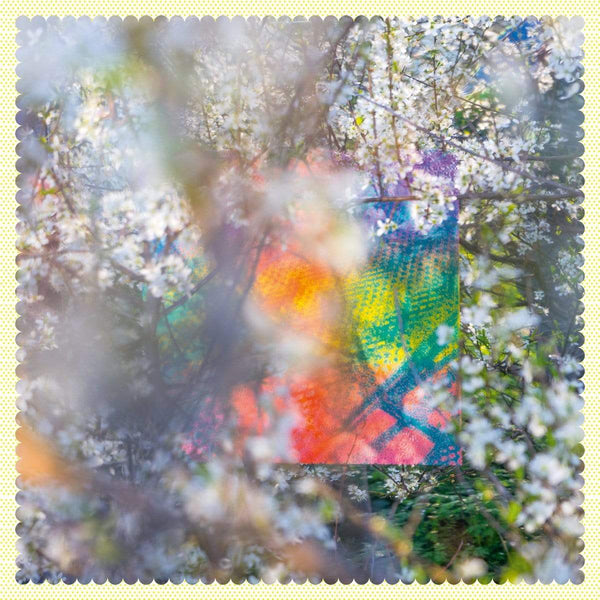 Four Tet - Sixteen Oceans (2xLP) Text Records