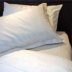 450tc Queen Sheet Set