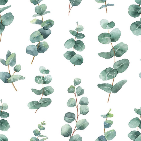 Eucalyptus Leaf - PRE ORDER OPENS FROM 13th Aug - 20th Aug CLOSED