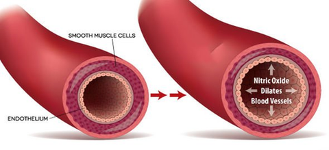 What is Nitric Oxide
