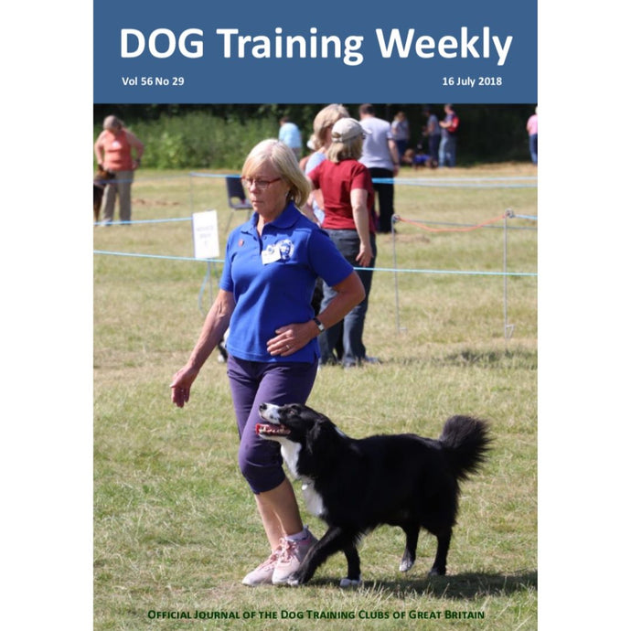 Dog Training Weekly