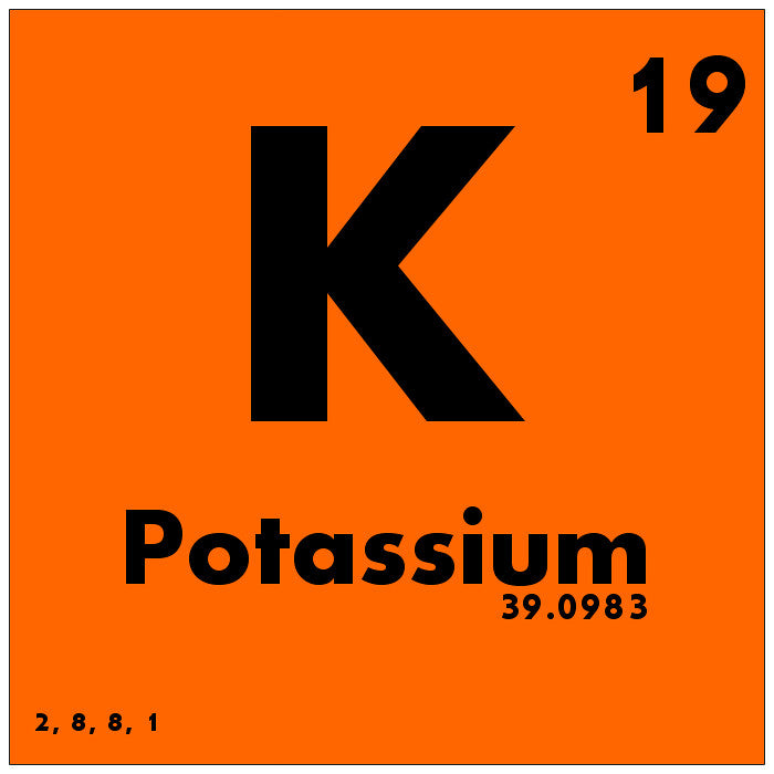How much potassium does a horse need