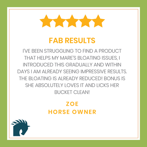 Horse tummy bloating - review