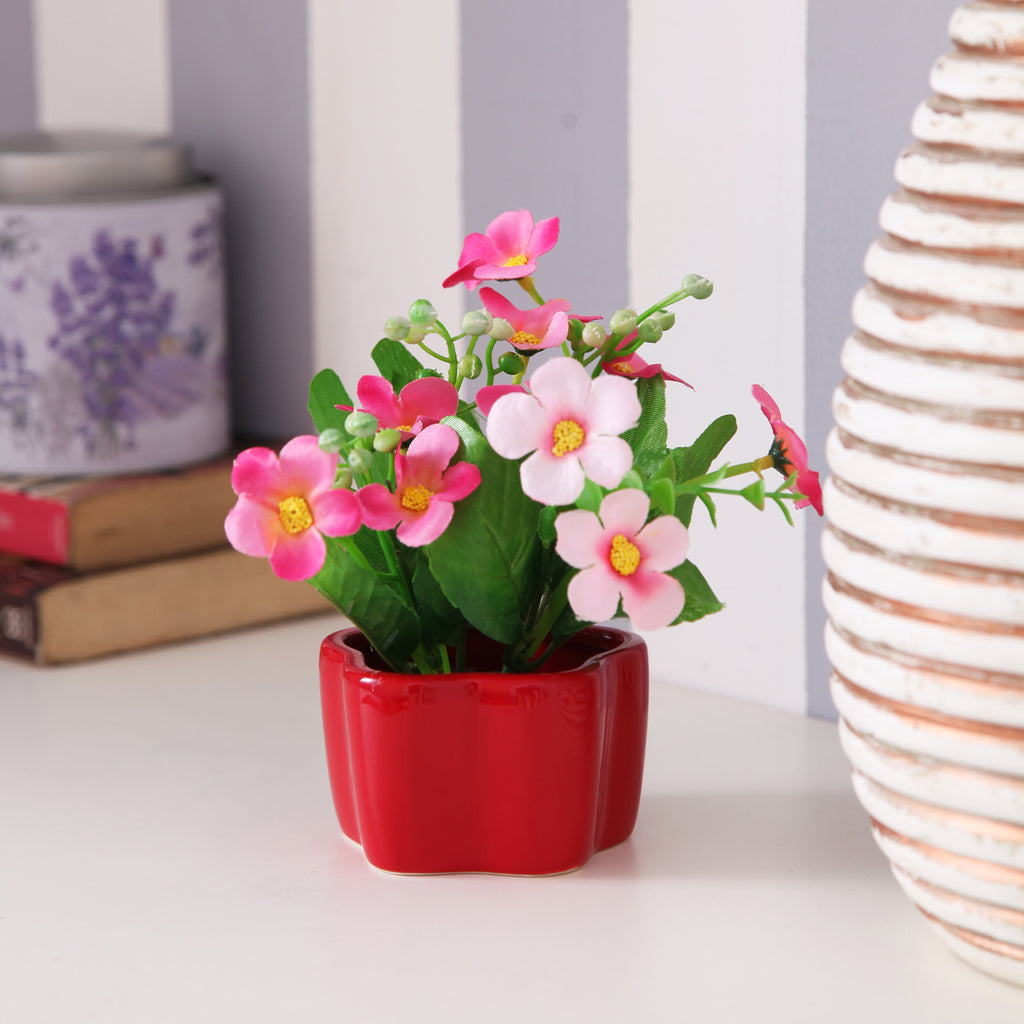 Cute Red Flower Pot