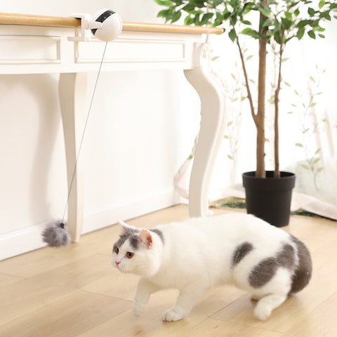 Smart Interactive Cat Training Ball Toy Automatic Lifting Cat Ball