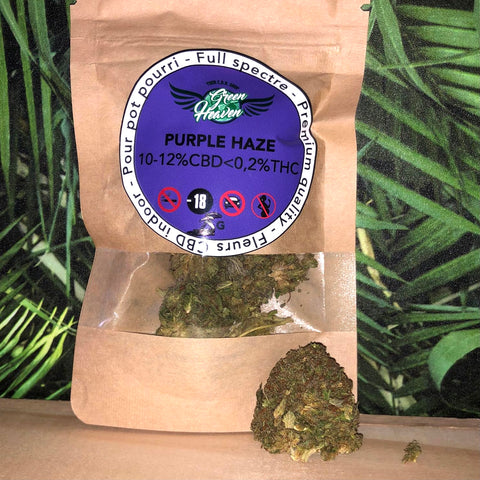 Fleurs suisses PURPLE HAZE 10-12% CBD - Indoor