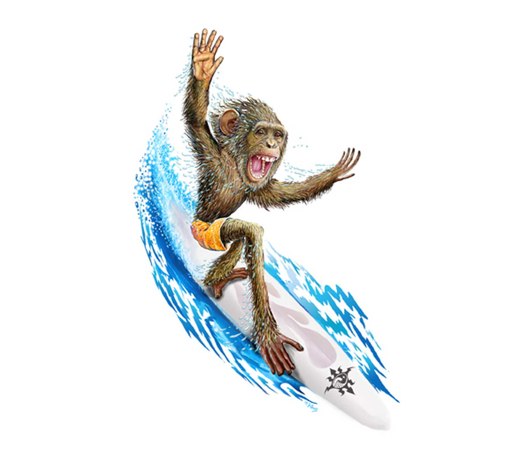 DS-573 // Surfing Monkey