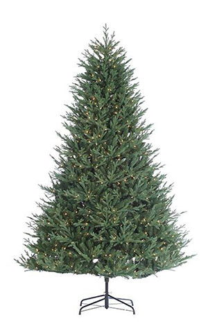 KENTUCKY FIR TREE LED