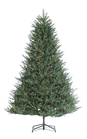 KENTUCKY FIR TREE PRELIT