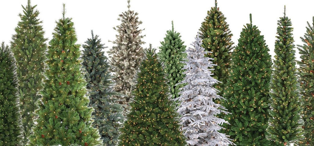 Collection of different styles of Christmas trees