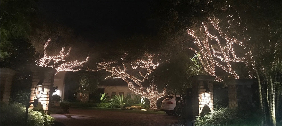 Outdoor tree lighting services