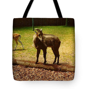 Billy Goat Keeping Lookout - Tote Bag