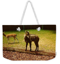 Billy Goat Keeping Lookout - Weekender Tote Bag