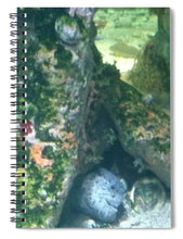 Eel Waiting To Snatch Something For Lunch - Spiral Notebook