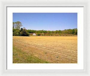 Old Chicken Houses - Framed Print