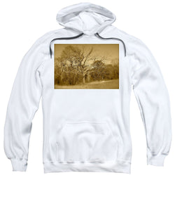Old Haunted Tree In Sepia - Sweatshirt