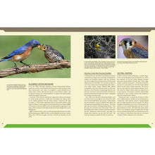 Load image into Gallery viewer, Audubon Birdhouse Book