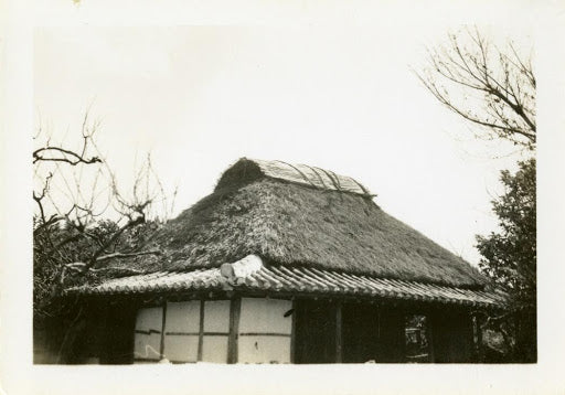 Thatched roof of Okinawa house