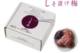 Shiso Umeboshi from Japan
