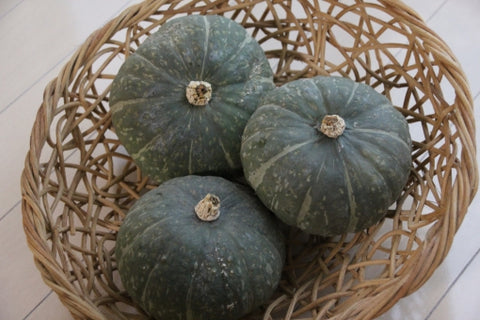 fall delights in japan pumpkins