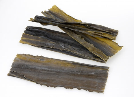 Kombu seaweed from Japan