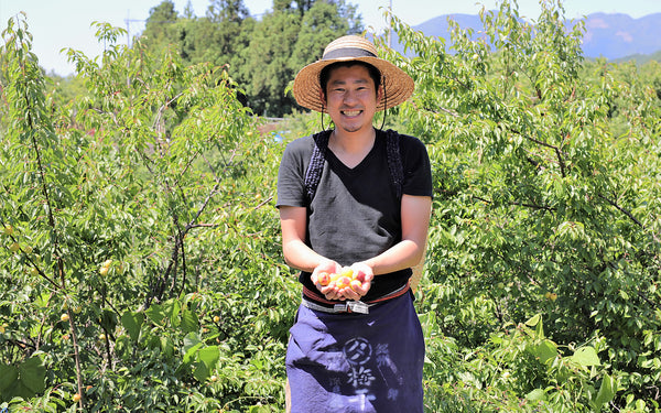 "Yasashi Ume-yasan (""Kind Plum Shop"") organic umeboshi producer in Wakayama prefecture, Japan"