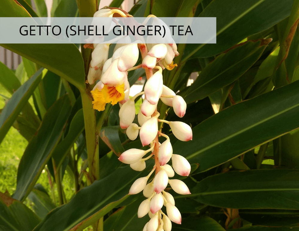 Getto (Shell Ginger) Tea from Kokoro Care Packages