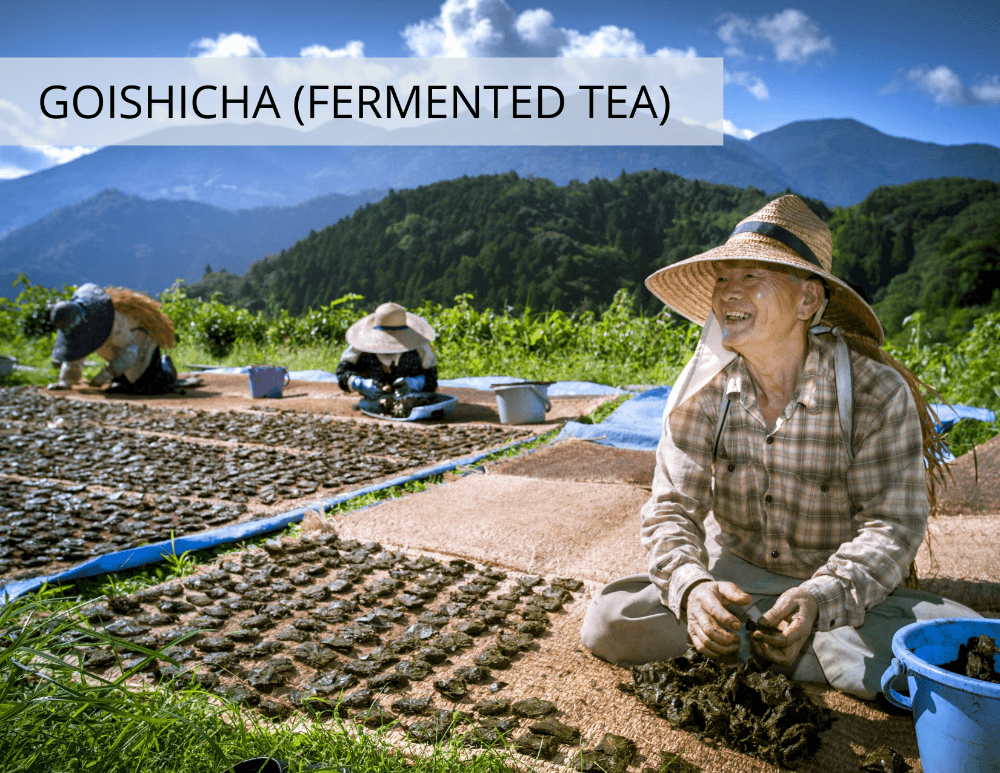 Goishicha (Fermented Tea) from Kokoro Care Packages