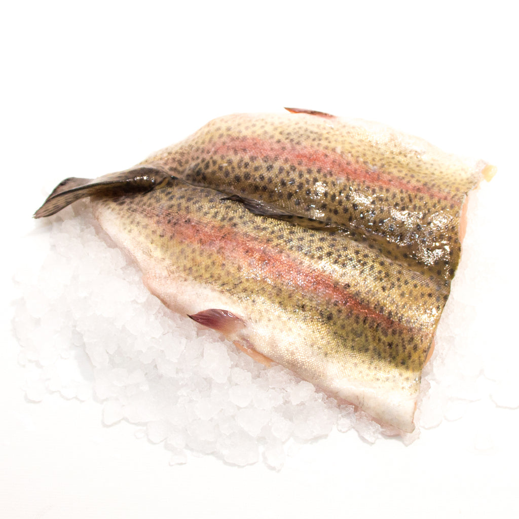 Rainbow Trout 10oz