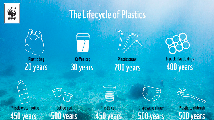Image showing the life cycle of single use plastic items